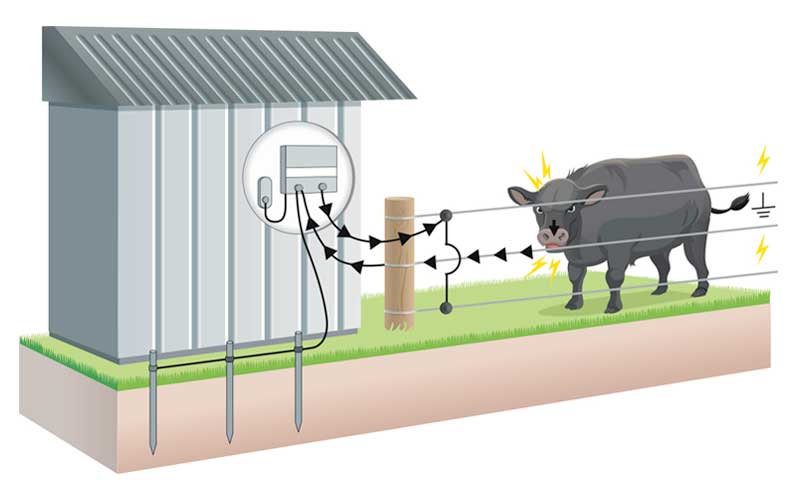 Understanding Electric Fencing