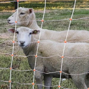 Sheep Netting Turbo